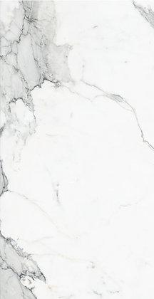 461111 - Calacatta Dorado Matte