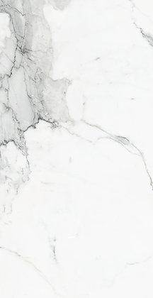 455161 - Calacatta Dorado Matte 12x24
