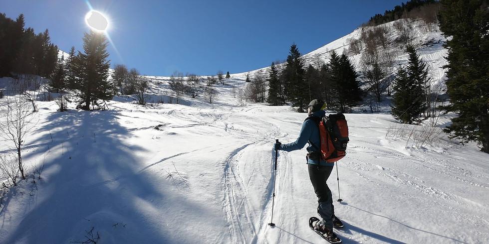 Snowshoe hiking at Vall d'Aran - Long Weekend
