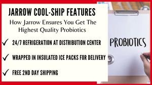 Top Probiotic Supplement For Men