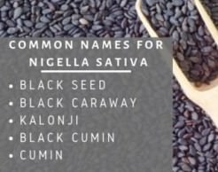 Nigella Sativa Benefits Before Dr. Sebi's Death
