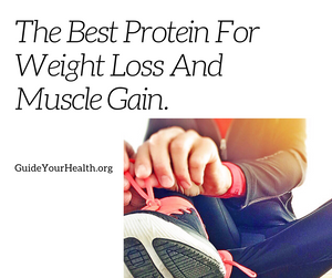 Best Protein Weight Loss Muscle Gain Cover