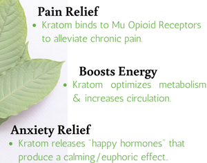 What Dose Of Kratom Powder Is Best For Pain and energy