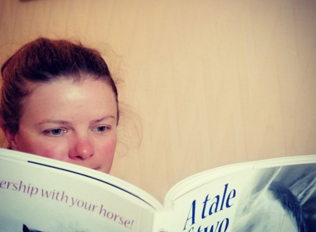 Book Review: A Tale of Two Horses by Kathie Gregory
