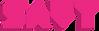 Savy Graphics Logo