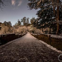Winter Scene: Chatelherault Country Park