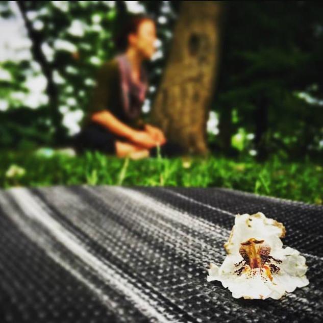 Morris Jumel Mansion Garden Yoga 2014