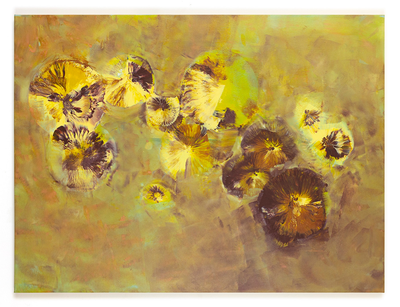 """or other organic matter 48""""x36"""" [SOLD]"""