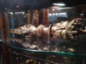 Medusa Tibet Knife.jpg