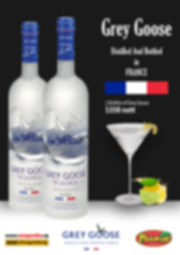 Grey Goose Promo 2.jpg