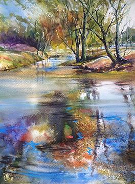 Woodland reflection by Paul Clark