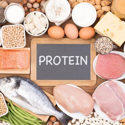 Διατροφή & Πρωτεΐνη