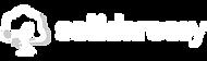 solidareasy logo branca horiz-05.png