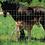 """Thumbnail: Horse/Security Panels 60"""" x 16' 2""""x4"""""""