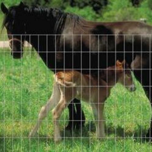 "Horse/Security Panels 60"" x 16' 2""x4"""