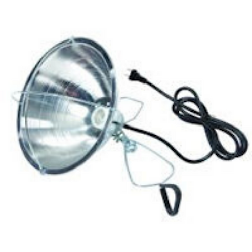 Brooder Reflector Lamp w/Clamp 10.5""