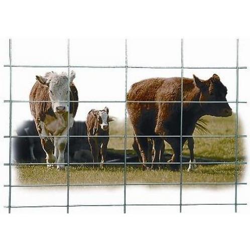 "Cattle Panels 50"" x 16'"