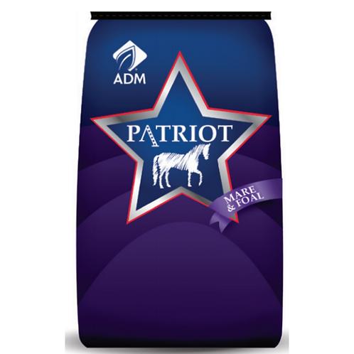 Patriot Mare & Foal