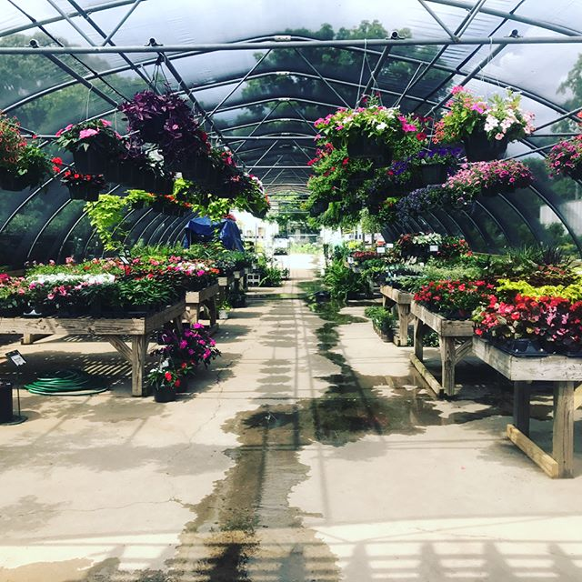 Come check out our Garden Center today! #GardenCenter #OxfordLumber #aceistheplace
