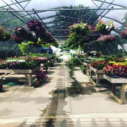 Come check out our Garden Center today! #GardenCenter #OxfordLumber #aceistheplace