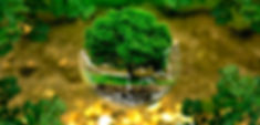 psicologia-ambiental-concepcoes-e-metodo