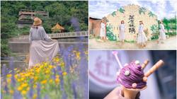 網美衝打卡!萬里親水步道「杜鵑&法國薰衣草」超好拍,還能順遊吃「紫色」霜淇淋-6fa7025d