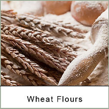 wheat flours dhillons.jpg