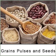 grains pulses seed.jpg