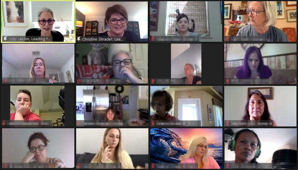 A screenshot of a virtual meeting conducted in Zoom.