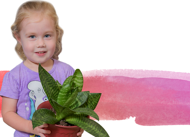 A preschool-aged girl holds a plant