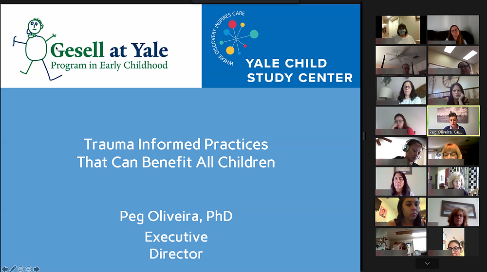 "A screenshot of a virtual meeting in Zoom. A title slide says ""Trauma Informed Practices that can benefit all children."""