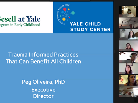 Local educators explore trauma-informed care and resilience in Childcare Resources virtual workshop