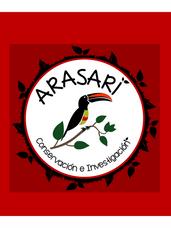 Arasari CI