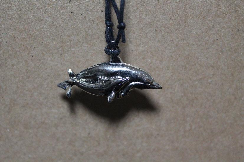 Delfin con cría