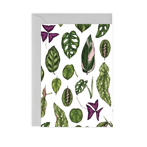 Houseplant Card