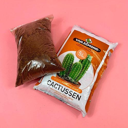 Cactus/Succulent Repotting Pack
