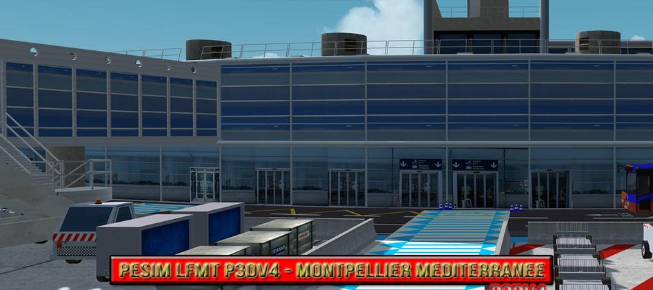 PESIM LFMT P3DV4