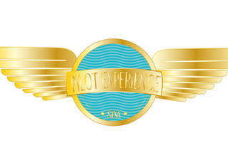 New Pilot Experience Sim Prices and MFS2020 informations