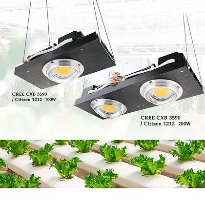 Luz de cultivo COB LED
