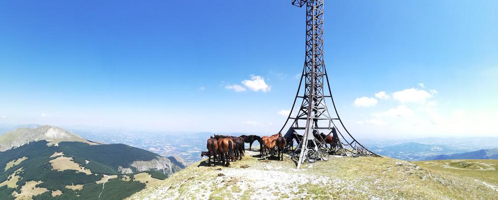 Croce del Monte Catria