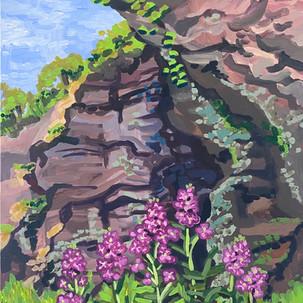 Cliffs and Phlox