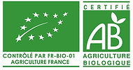 logo_ue-ab France_edited.jpg