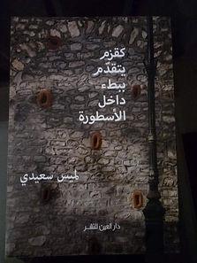 Lamis Saidi