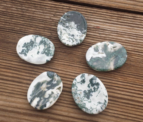 Tree Agate Worry Stone