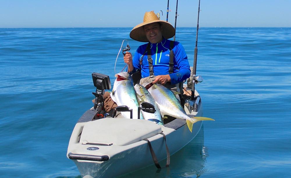 kayak fishing yellowtail