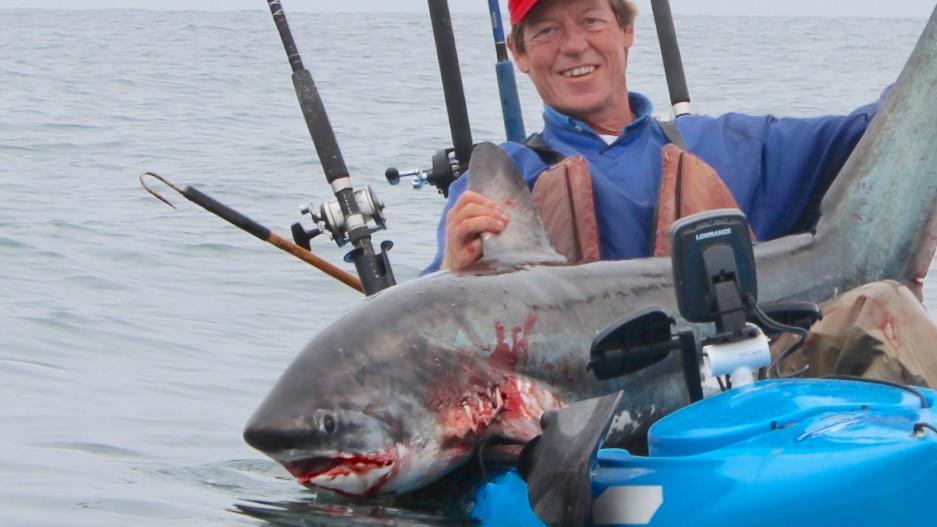 kayak thresher shark