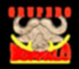 Grupero logo mx.png