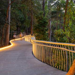 Noosa-boardwalk-at-night-full-width-1900