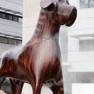 Mannes-the-dog-hero-1900x960.jpg