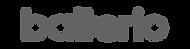 Balterio Ahşap Logo